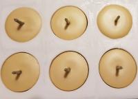 Bio-Bienenwachskerze Teelicht