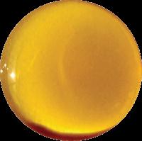 Bio-Honig Abo Weinviertler Honig